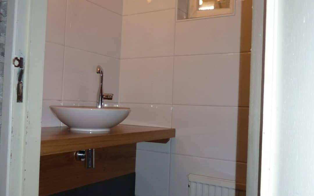 Toilet renovatie 2